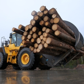 Novy Sever LPK LLC to invest 366 million rubles in the construction of a timber enterprise in the Perm region